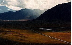 essay arctic national wildlife refuge