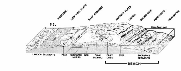 Restles3 moreover Fish Structure And Function additionally Coq Et Poule likewise 2014 10 Submarine moreover The Cool Staircase Shaped Hills North Of Santa Cruz. on ocean waves diagram