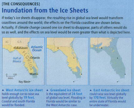 Indian River Lagoon Case Study - Indian river lagoon map