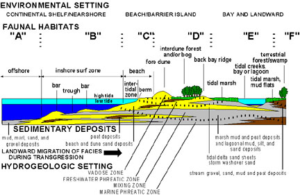 an analysis of the erosion of long islands barrier beaches Mireille escudero, rodolfo silva, and edgar mendoza (2014) beach erosion  driven by natural and human activity at isla del carmen barrier island, mexico   the analysis of the physical settings, historical shoreline changes and  hydrodynamic  special issue 62 - applied lidar techniques [pe'eri & long] ( spring 2011.