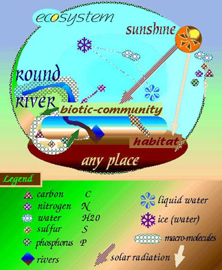 schematic model of ecological revolutionsa schematic diagram of significant component parts of an ecosystem