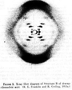 X ray crystallography dna